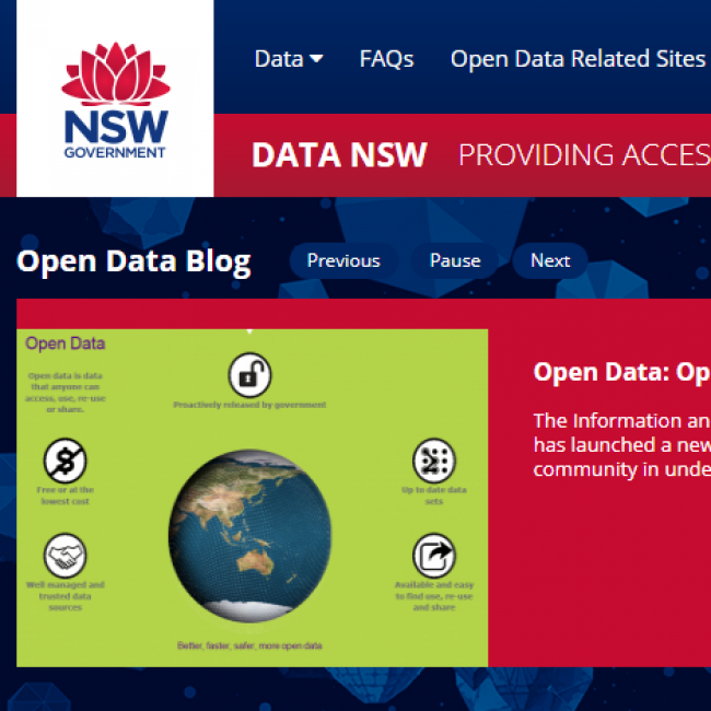 Data NSW Case Study